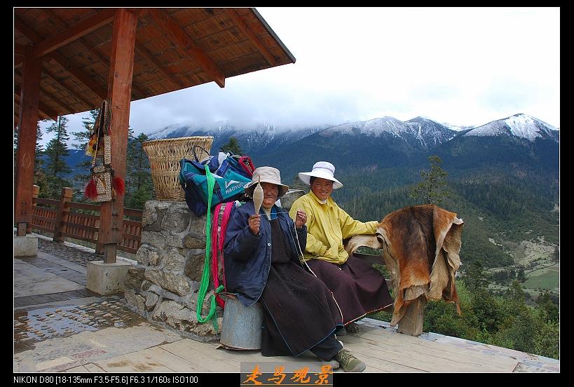 青藏高原之行____林芝 - 西樱 - 走马观景