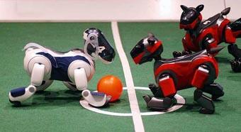 2006机器人世界杯 德国开赛 - 科学美国人 - 环球科学