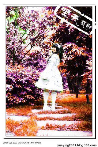 老残萝莉梦 - 月影 - 月之影 影之海