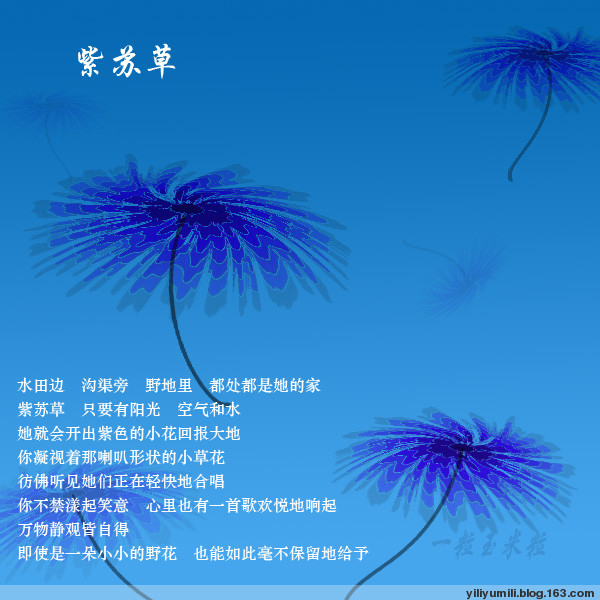 紫苏花 - yiliyumili - 一粒玉米粒