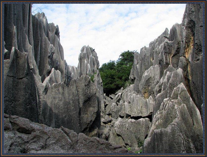 【引用】人间天堂之一—云南石林﹙组图﹚ - 隆里奇 - 隆 里 奇 说 事