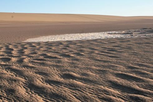 图文:横穿罗布泊日记之五:五彩沙漠上撞见首只活物 - 赵亚辉 - 赵亚辉