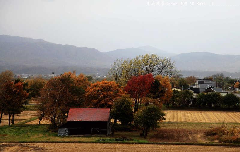 """赶赴一场秋天的盛宴_____最美的""""枫景"""" - 西樱 - 走马观景"""