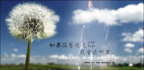 2011年08月03日 - 雁月菊蚕 - 流泪的风......