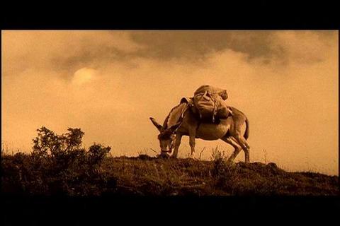 转载:宗萨仁波切电影02《旅行者与魔术师》线上欣赏 - 喇嘛百宝箱 - 喇嘛百宝箱