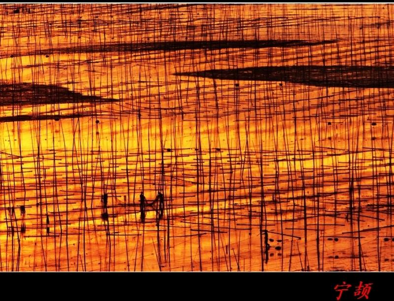 中国最美丽的滩涂--霞浦 - 宁颉 - 宁颉的博客