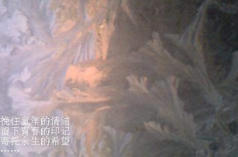 霜花情结[原创] - ltouy - ltouy的博客