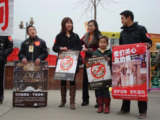 """1月30-31号""""反虐待动物、拒吃猫狗肉""""宣传活动 - 广元市博爱动物保护中心 - 广元市博爱动物保护中心"""