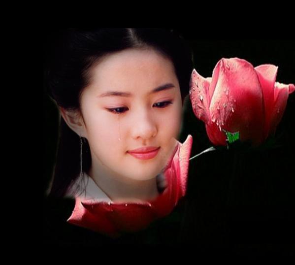 蓝色的思念,风中的遗憾(精美音画图文) - 美丽心情 - xr860520的博客