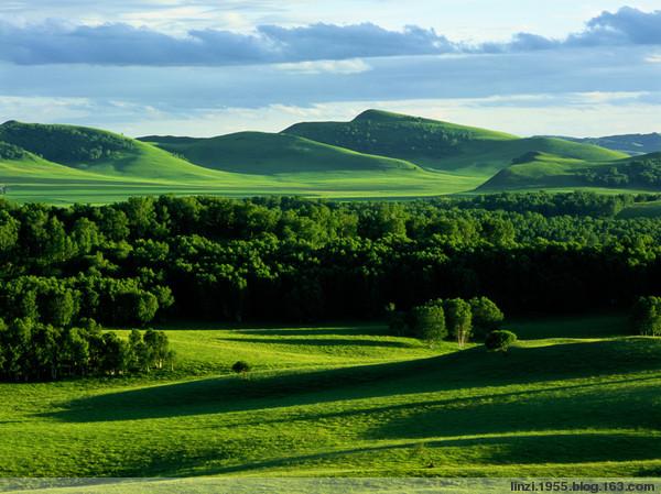如果心里有森林,阳光就会充满你的心。 - 开心就好 - 开心就好的博客 欢迎你朋友!!