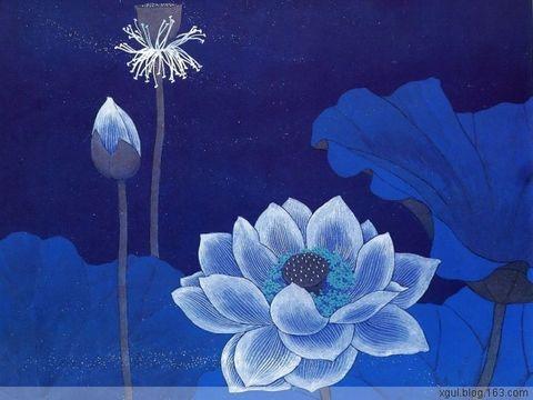 音画欣赏《蝴蝶与蓝》——古筝与大提琴的对话 - 蝉翼云朵 - 蝉翼云朵