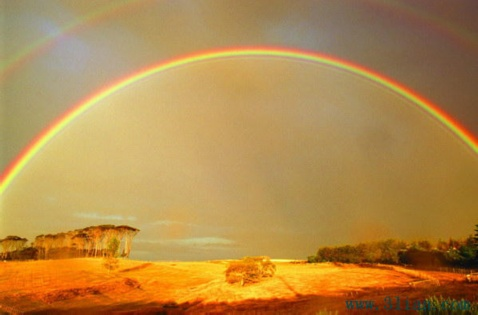 我在虹上荡秋千【疏勒河的红柳】 - 疏勒河的红柳艺术走廊 - 疏勒河的红柳艺术走廊