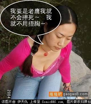 引用 很搞笑啊!哈哈哈~ - 蝴蝶兰花开 - 梅花香自苦寒来