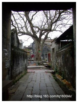 珠海·中山的景观大道(4) - lq -