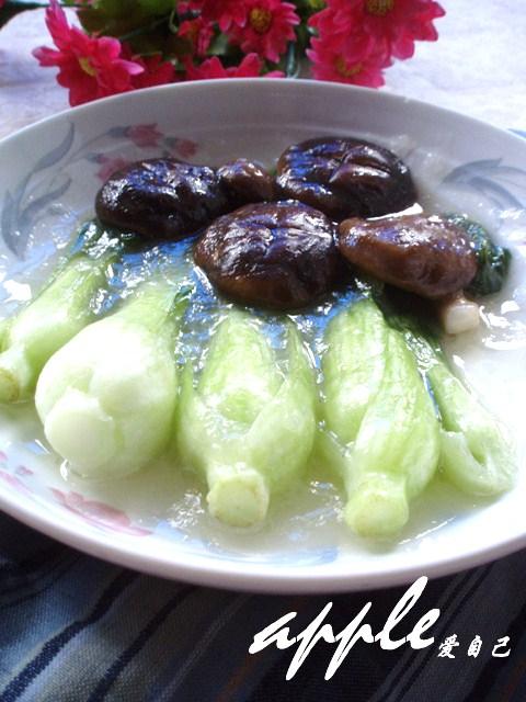 感谢自己---青菜炒香菇 - 可可西里 - 可可西里