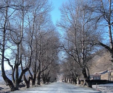 五绝  初冬 - 雷天德(雨田) - 雷天德的博客
