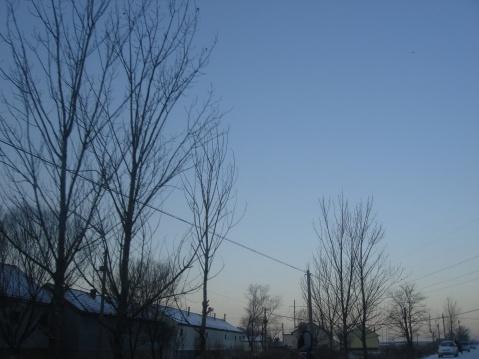 2009年1月9日 - 独坐黄昏听雨声 - dzhhtys的博客