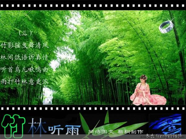 情系竹林 - 红叶风萧萧  - 红叶风萧萧