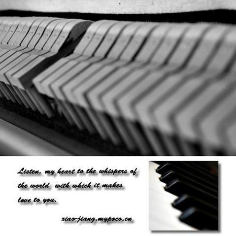 The piano of STEINWEY. - xy -