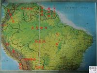 异形的原产地和品种分布介绍!!!! - x-999 - 牧 鱼 水 族