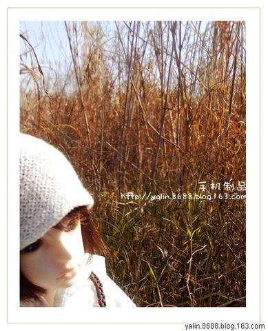 2008年12月15日 - Syaya - Syaya ○ .blog