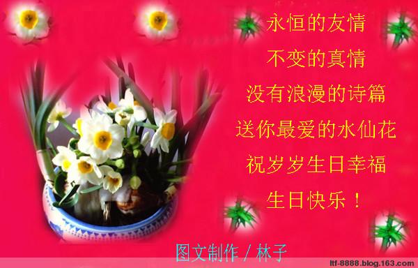 祝冷青秋妹妹生日快乐 - 林子 - .