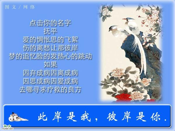 精美圖文欣賞5(原) - 心灵之约 - 心灵之约