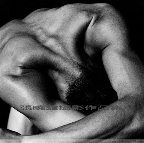 張曉雄人體攝影作品:男舞者系列一 - 野熊 - 野熊荒地