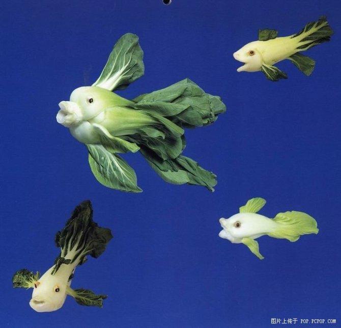 创意作品 - 北方的燕子 - 北方幸福的燕子