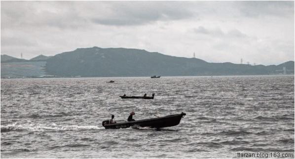 [原]深圳·半岛城邦·台风浣熊 - Tarzan - 走过大地