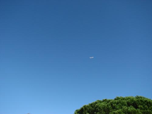 飞向那一片无边无际的蓝 - Jordy - 达人J · 365乐游日记
