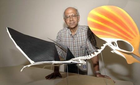 翼龙飞行新知两则 - 邢立达 - 邢立达的恐龙频道