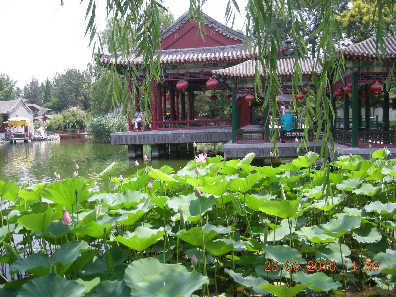 苏州,不止一条河(4)(带你走入园林世界) - sijiaduba - 私家读吧