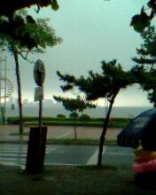 日记[2007年8月7日]I wanna wanna swimming - Bobpop - 正牌东方好儿童