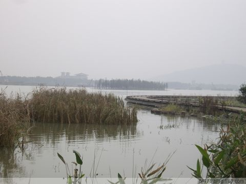走进太湖之滨的新景点------管社山庄 - 阳光月光 - 阳光月光