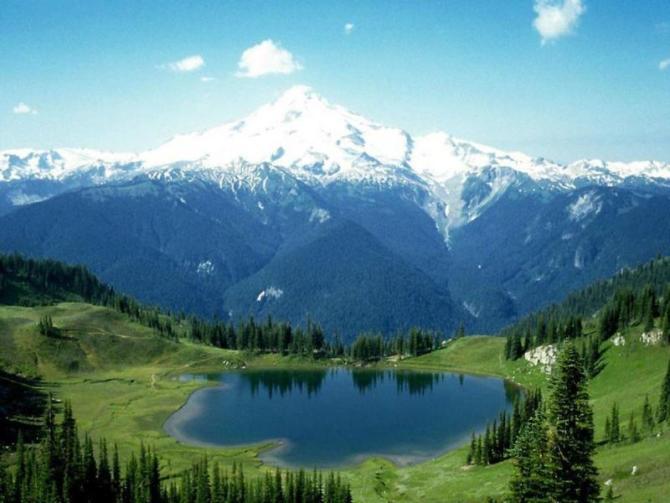 多用途雨水池 - 仁和山庄 - 自然的怀抱,梦想的家园