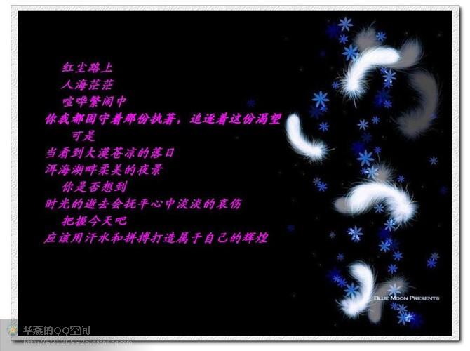 美好心境 - 苍狼 - zhang.meng.long 的博客