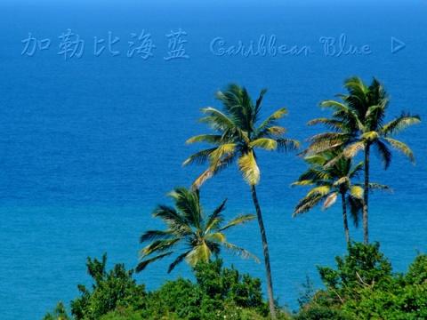 在那水晶般的加勒比海上(二十二) - 朵儿 - 朵儿
