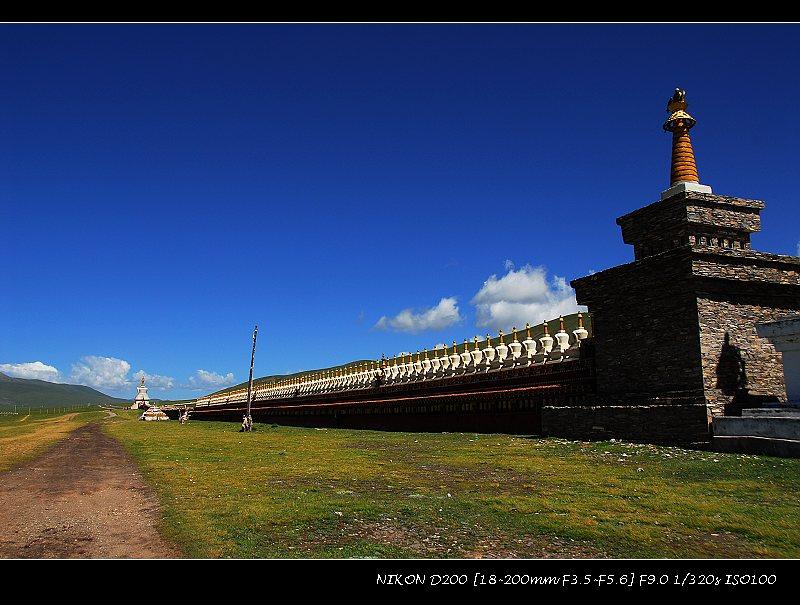 石渠草原____中国最美丽的草原之一 - 西樱 - 走马观景