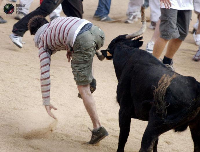 真的猛公牛是敢于报复人滴/组图