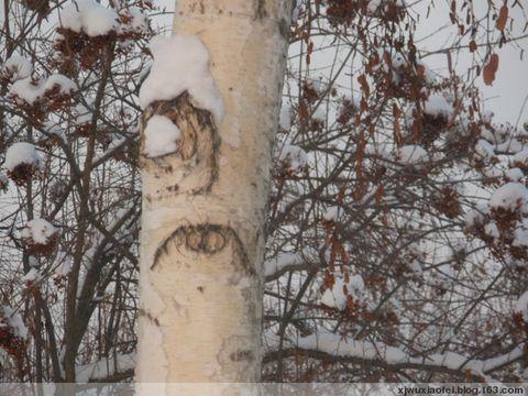 情人的眼睛 - 红色毛芨芨 - xjwuxiaofei的博客