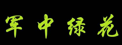 军中绿花 ---潇洒女兵音画  - 雅茗 - 雅茗的博客
