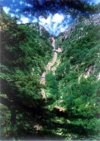 全国文明风景旅游区示范点 称号 泰山图片