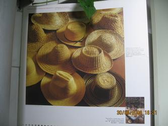 帽子(委内瑞拉之十一) 20081128