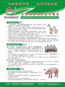 2009年全国畜牧兽医集中力量抓好6项工作  - 禽病专家 - 中国(驰骋)动物保健品供应商