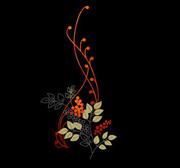 黑色背景.插花艺术 - 香儿 - 香儿