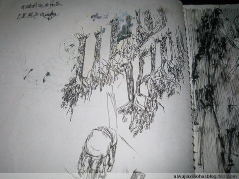 2009年1月3日 - 墨灰 - 没头没脑