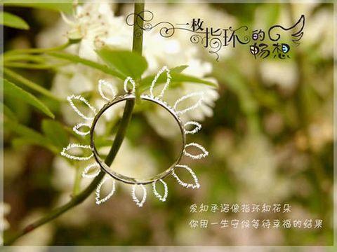 [原]让爱感动奇迹 - ヾ潇潇ヾ  - 潇潇紫梦园