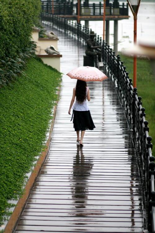 眼儿媚  . 冷清秋 - 雨忆兰萍 - 网易雨忆兰萍的博客
