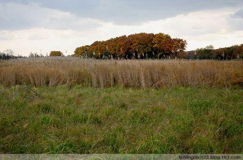 (原创图文)回归大自然的感觉 ——北大荒行之一 - lanlingdai123 - 蓝领带de博客